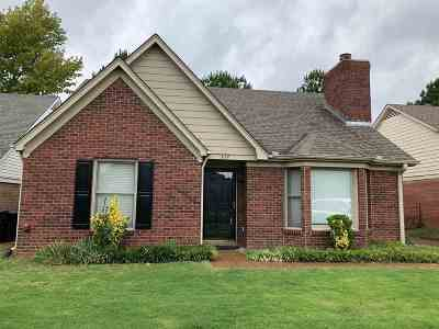 Collierville Single Family Home Contingent: 377 Scarlet Tanager