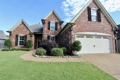 Bartlett Single Family Home For Sale: 3300 Richland View