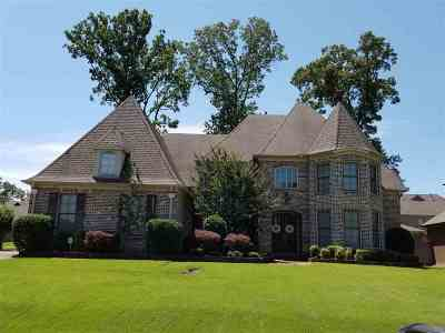 Collierville Single Family Home For Sale: 453 Stone Oaks