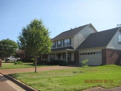 Lakeland Single Family Home For Sale: 3102 Long Bridge
