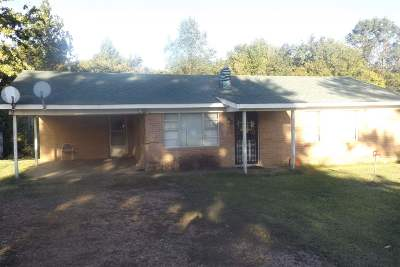 Ripley Single Family Home For Sale: 278 Smithville