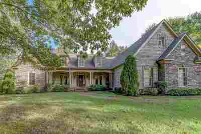 Lakeland Single Family Home For Sale: 9905 Memphis-Arlington