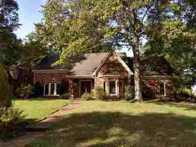 Collierville Single Family Home For Sale: 2791 E Levee Oaks
