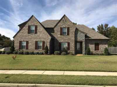 Bartlett Single Family Home For Sale: 5099 Forest Oasis