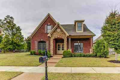 Collierville Single Family Home Contingent: 1680 Holly Forest