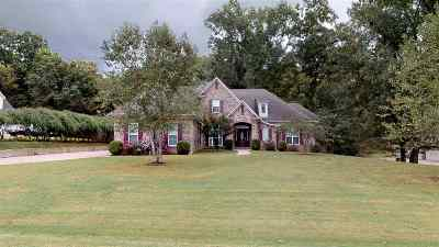 Southaven MS Single Family Home Contingent: $349,900