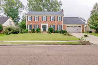 Germantown Single Family Home For Sale: 8619 Riverchase