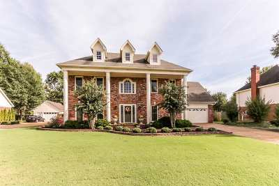 Collierville Single Family Home For Sale: 1326 Creek Valley
