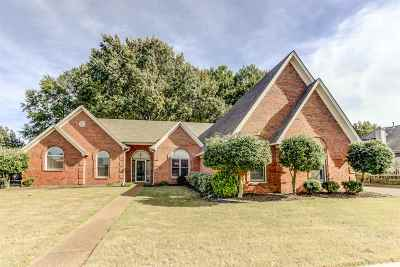 Collierville Single Family Home Contingent: 1004 Tara Woods