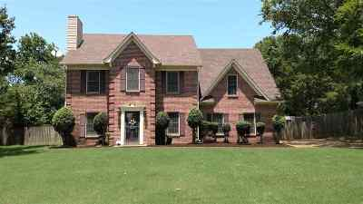 Collierville Single Family Home For Sale: 168 E Nolley