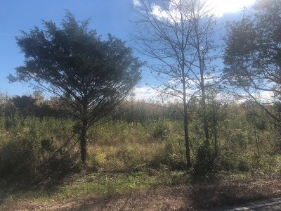 Hernando Residential Lots & Land For Sale: 1 Grass Pond