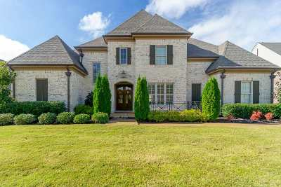 Collierville Single Family Home For Sale: 1321 Conser