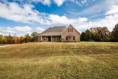 Byhalia Single Family Home For Sale: 162 Byhalia Creek Farms