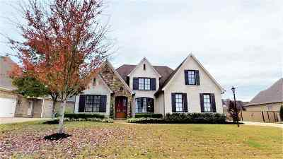 Olive Branch MS Single Family Home Contingent: $335,000