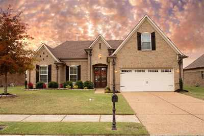 Olive Branch Single Family Home Contingent: 7157 Reliance
