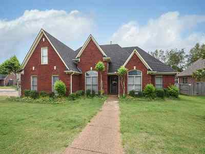 Memphis Single Family Home For Sale: 8979 Lindstrom