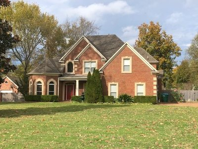 Olive Branch Single Family Home For Sale: 8576 Saddle Creek