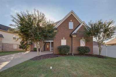 Bartlett Single Family Home For Sale: 8938 Village Lake