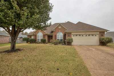 Arlington Single Family Home For Sale: 11640 Summer Meadows