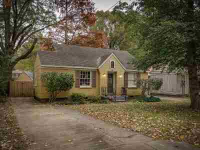 Memphis Single Family Home For Sale: 348 Lundee