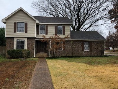 Collierville Single Family Home Contingent: 145 E Lawnwood
