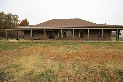 Unincorporated TN Single Family Home For Sale: $250,000