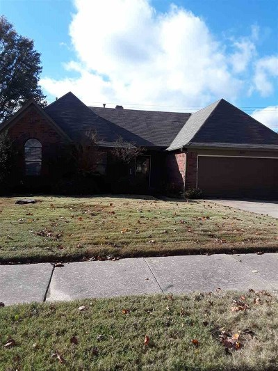 Bartlett Single Family Home For Sale: 3605 Tiffany Oaks
