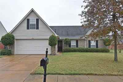 Southaven Single Family Home For Sale: 2509 Russum