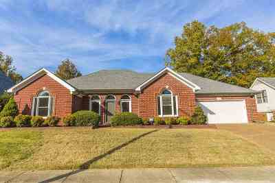 Shelby County Single Family Home For Sale: 766 Vivian Leigh