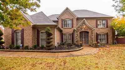Collierville Single Family Home For Sale: 525 W Winoka
