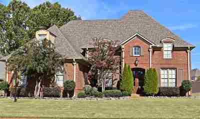 Olive Branch Single Family Home For Sale: 6594 Sundance