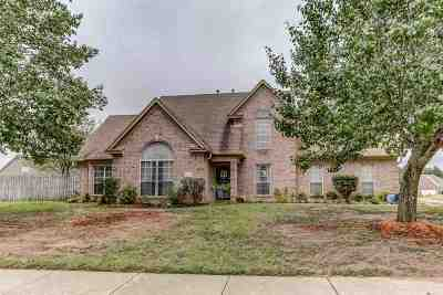 Arlington Single Family Home Contingent: 5260 Summer Meadows