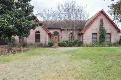 Collierville Single Family Home For Sale: 225 Alan