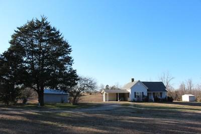 Stantonville Single Family Home For Sale: 2562 Mount Vinson