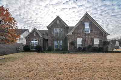 Bartlett Single Family Home For Sale: 3315 Richland Valley