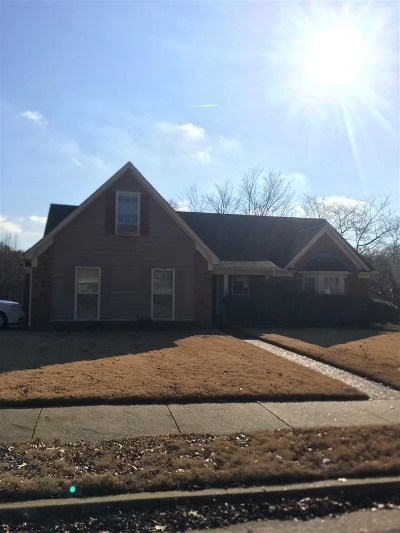 Bartlett Single Family Home For Sale: 7037 Meadowlands