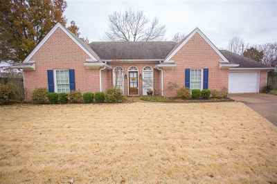 Memphis Single Family Home For Sale: 380 Meadow Trail