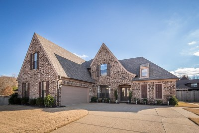 Arlington Single Family Home For Sale: 12179 Brooks River