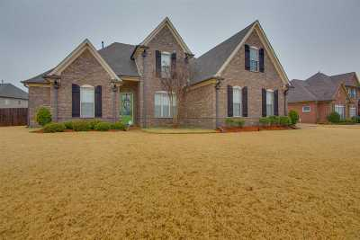 Collierville Single Family Home Contingent: 1283 Shining Sea