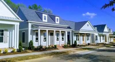 Collierville Single Family Home Contingent: 498 S Shea