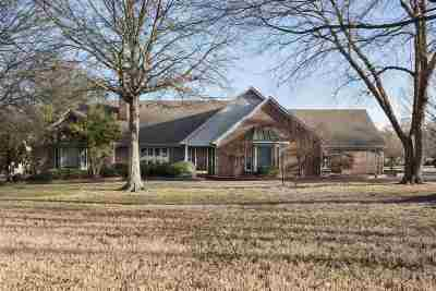 Bartlett Single Family Home For Sale: 3820 Planters View