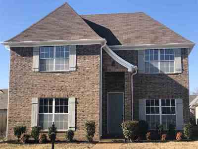 Memphis Single Family Home For Sale: 1163 Casentino