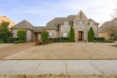 Collierville Single Family Home For Sale: 605 Catamount