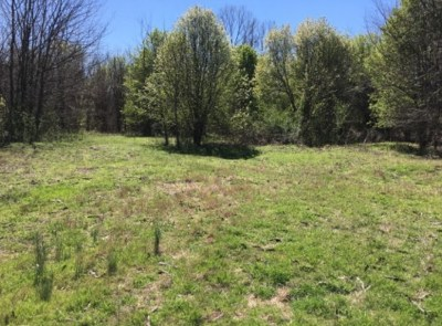 Bartlett Residential Lots & Land For Sale: 4451 Brunswick