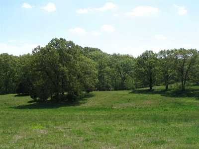 Arlington Residential Lots & Land For Sale: 170 Amherst
