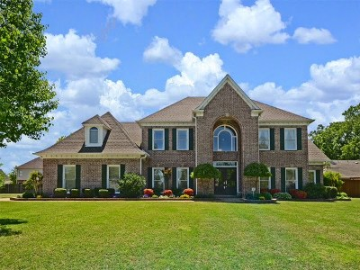 Collierville Single Family Home For Sale: 1175 Willow Bend