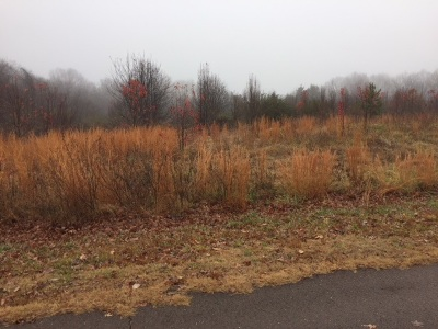 Olive Branch Residential Lots & Land For Sale: Hunters Horn