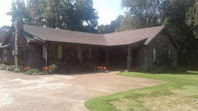 Lakeland Single Family Home For Sale: 10541 Us 70