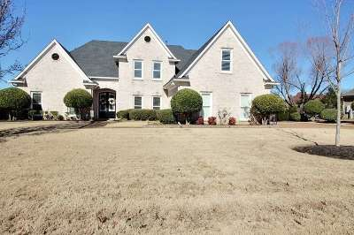 Collierville Single Family Home For Sale: 488 Indian Hollow