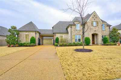 Collierville Single Family Home Contingent: 1368 Carmony